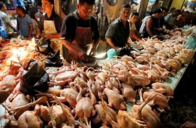 Rumah Potong Unggas Khawatir akan Serbuan Daging Ayam Impor Asal Brasil