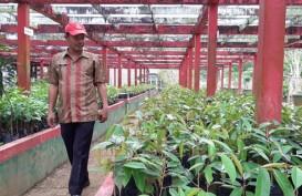 Kalimantan Barat Kembangkan Agroteknopark