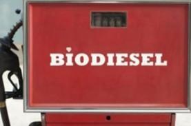 Era Mobil Listrik, Biofuel Masih Bisa Berkembang