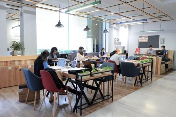 Coworking space Kolega. - Istimewa