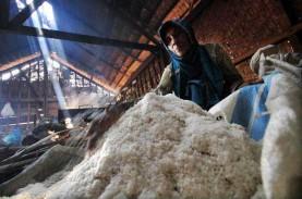 Struktur Industri Garam Lokal Harus Diperkuat