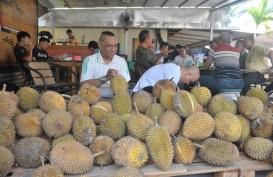 Kalbar Kenalkan 12 Varietas Durian Unggul
