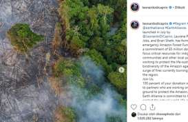 Leonardo DiCaprio Janjikan US$5 Juta untuk Pelestarian Hutan Amazon