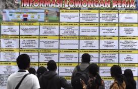 Pembukaan 12,8 Juta Lapangan Kerja Baru, Efektifkah Turunkan Pengangguran?