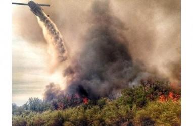 Presiden Brazil Ajukan Syarat Terima Bantuan G7 Atasi Kebakaran Hutan Amazon