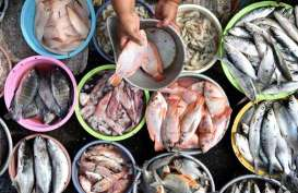 Pasar Ikan Modern Palembang Ditarget Rampung Akhir Tahun