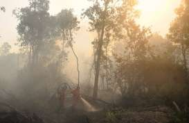 Tim KLHK Selidiki Titik Api di Kalimantan Barat