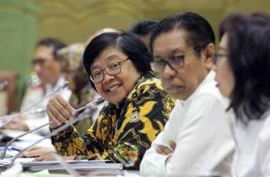 KLHK Minta Anggaran Rp9,31 Triliun untuk 2020