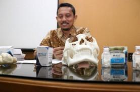 Dosen UNS Temukan Material Pengisi Tulang