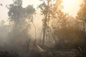 436 Hektare Lahan Terbakar di Merbabu Sudah Padam