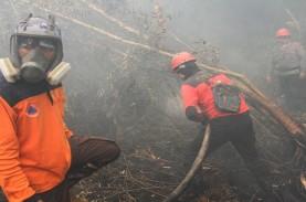 Anies Kirim 65 Petugas Bantu Tangani Karhutla di Riau
