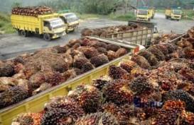 Gapki: Kinerja Ekspor Minyak Sawit Mulai Membaik