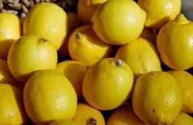 Hanya dengan Mencium Aroma Lemon Bisa Membuat Orang Merasa Lebih Langsing
