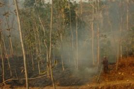 Kebakaran Gunung Slamet, Lima Kabupaten Terdampak