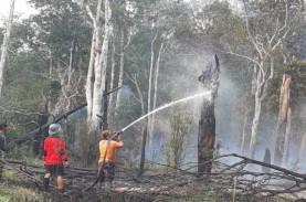 Polda Kalimantan Selatan Tetapkan Satu Tersangka Kasus…