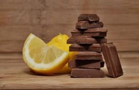 Ternyata, Cokelat Tak Bantu Meningkatkan Penglihatan