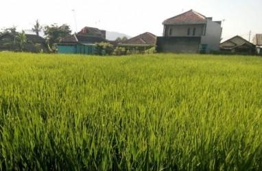 Model Zero Waste untuk Kelangsungan Pertanian di Musim Kering