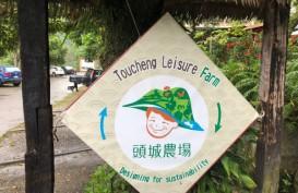 LAPORAN DARI TAIWAN : Ini Wisata Halal yang Diakui Muslim Tionghoa