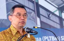 Ekspansi Anorganik, Nusantara Infrastructure (META) Lirik Pembangkit Listrik Biomassa