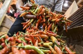 Inflasi Riau Masih Dipengaruhi 'Volatile Food' Terutama Cabai