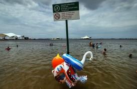 3 Ton Kulit Kerang Hijau Ditebar di Perairan Ancol