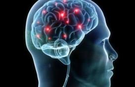 Jangan Sampai Pecah Aneurisma di Otak