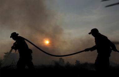 15 Hektare Lahan Kawah Putih Ciwidey Terbakar, Tim Gabungan Terjun