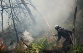 Kebakaran di Kawah Putih Mulai Padam, Api Pindah ke Pasir Jambu