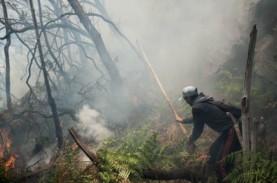 Kebakaran di Kawah Putih Mulai Padam, Api Pindah ke…