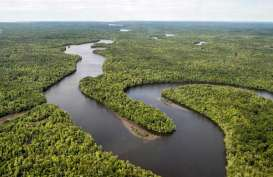 Pelestarian Lingkungan Sumut Diharapkan Tak Sekadar Seremonial