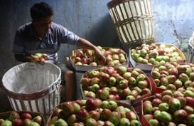 Kadin Jatim Beri Pelatihan & Pendampingan UMKM Sektor Agro