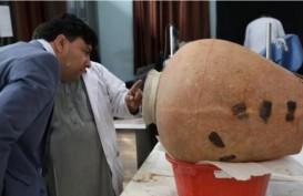 Usai Perang Berkepanjangan, Museum Afghanistan Pulihkan Artefak Budha