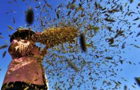 Dimodali Rp50 Miliar, PT Agrobisnis Banten akan Beroperasi 2020