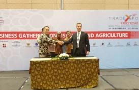 Konsorsium Indonesia Gandeng Norwegia Garap Perikanan, Investasi US$50 Juta