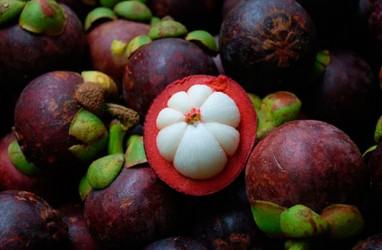 4 Fakta Manfaat Buah Manggis untuk Kecantikan dan Kesehatan