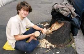 Pohon Mati di Roma Jadi Karya Seni di Tangan Gandini