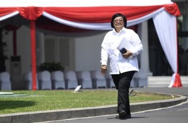 Profil Siti Nurbaya Bakar, Calon Menteri Kabinet Jokowi-Ma'ruf