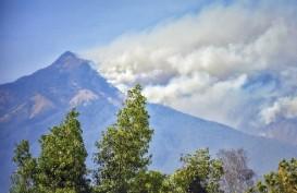 Kebakaran Rinjani Rusak 6.055 Hektare Lahan