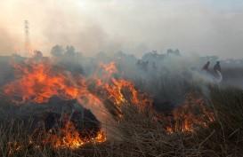 Suhu Panas, Kebakaran Alang-alang dan Gambut di Kota Bandung Meningkat