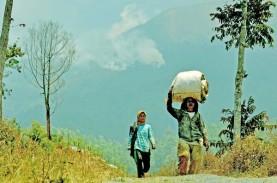 Kawasan Hutan Gunung Sumbing Seluas 16 Ha Masih Terbakar