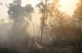 Kebakaran Kawasan Taman Nasional Gunung Ciremai sudah Hanguskan 150 Hektare