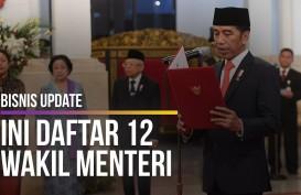 Kabinet Menggemuk, Jokowi Tambah 12 Wakil Menteri