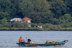 Segara Anakan kini Jadi Objek Wisata Mangrove Terlengkap…
