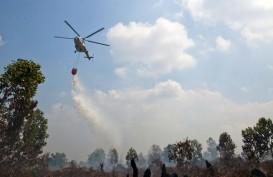 Kemarau Panjang, 1.720 Ha Lahan Hutan di Jateng Terbakar