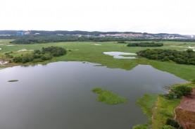 Ancam Pasok Air di Batam, 180 Hektar Eceng Gondok…