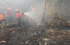 Pemadaman Karhutla Riau, BNPB Serahkan Bantuan Senilai Rp24 Miliar