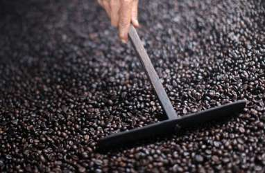 Ekspansi Produksi, Industri Pengolahan Kakao dan Kopi Butuh Tambahan Bahan Baku