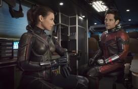 Film Ant-Man 3 Mulai Diproduksi Mulai 2021