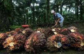 Ekonomi Riau Triwulan III/2019 Hanya Tumbuh 2,74 Persen