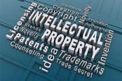 PERLINDUNGAN HAKI : Jalan Berkelok Penyelesaian Sengketa Kekayaan Intelektual